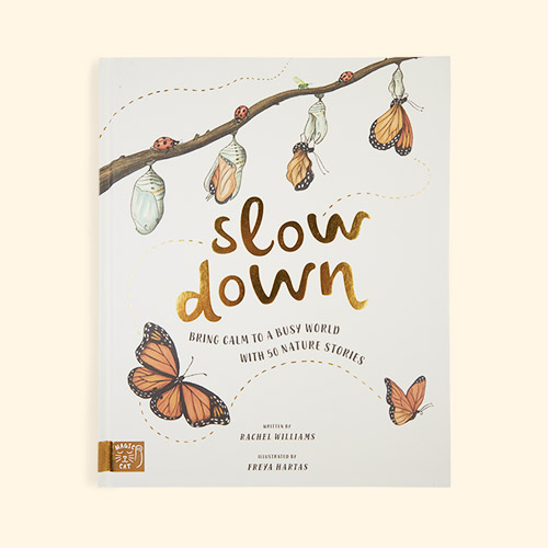 Multi Abrams & Chronicle Books Slow Down Bring Calm To A Busy World