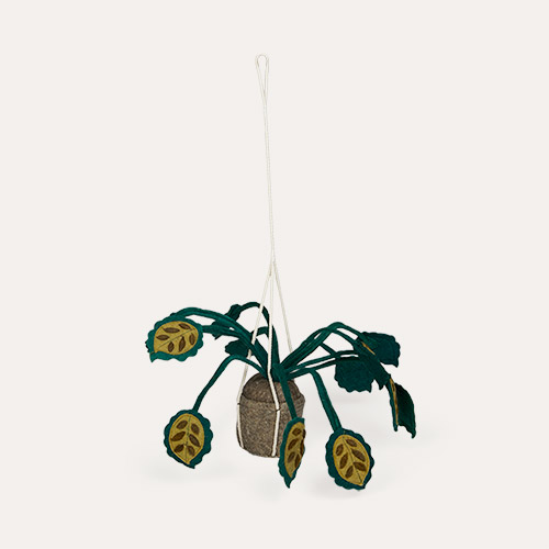 Green Kids Depot Hanging Plant Big Leaves