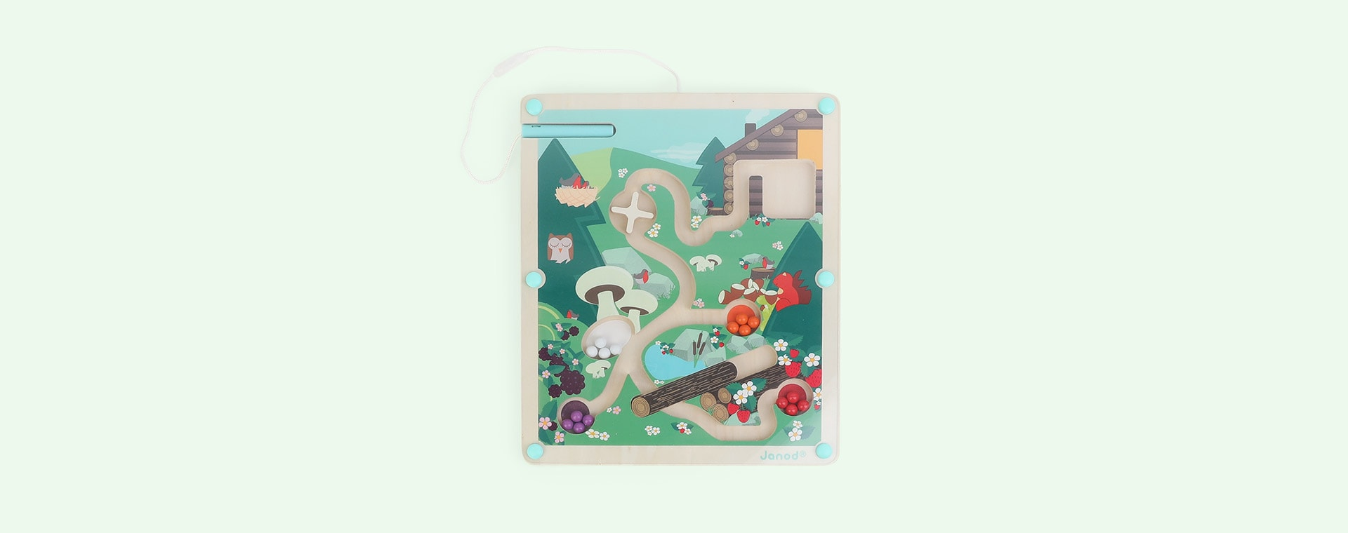Multi Janod Forest Magnetic Maze