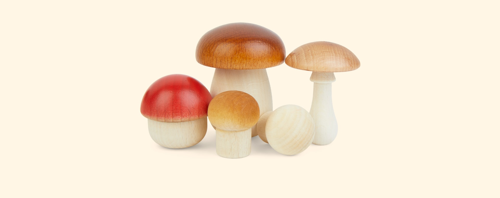 Multi Moon Picnic Forest Mushrooms in a Box