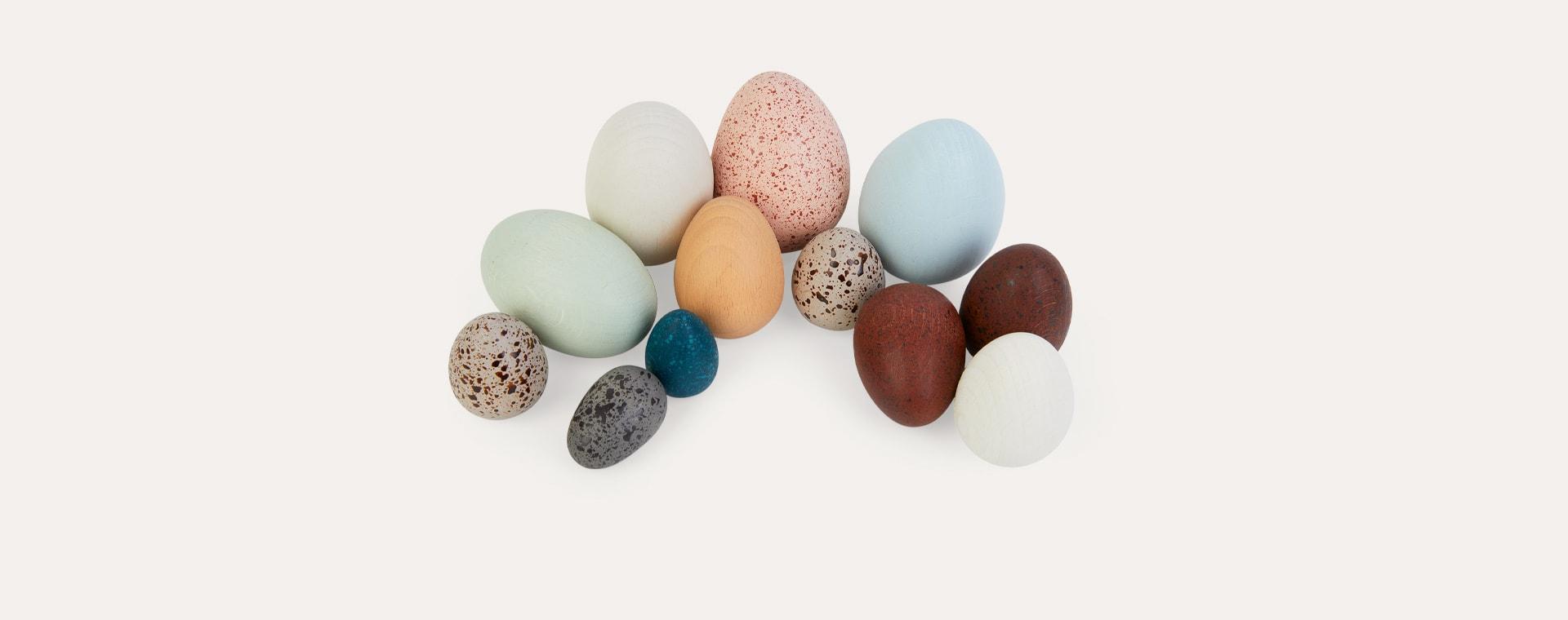 Multi Moon Picnic A Dozen Birds Eggs