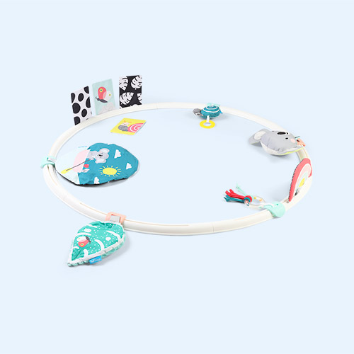 Multi taf toys All Around Me Activity Hoop