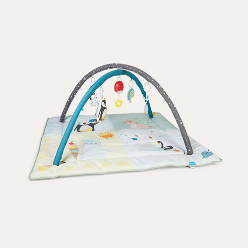 Multi taf toys North Pole 4 Seasons Gym