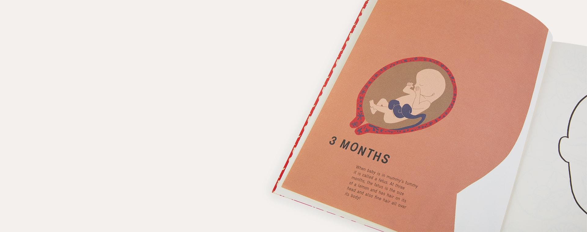 Multi bookspeed The New Baby