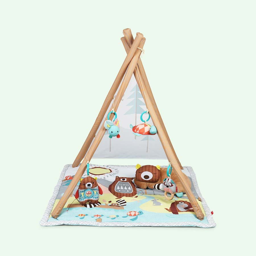 Multi Skip Hop Camping Cubs Activity Gym
