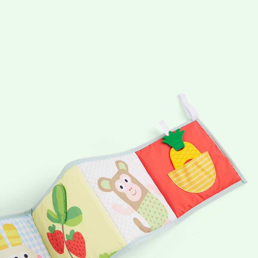 Multi taf toys 3 in 1 Baby Book