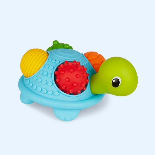 Multi B Kids Sensory Turtle