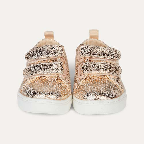 Rose Gold TOMS Lenny Sneakers
