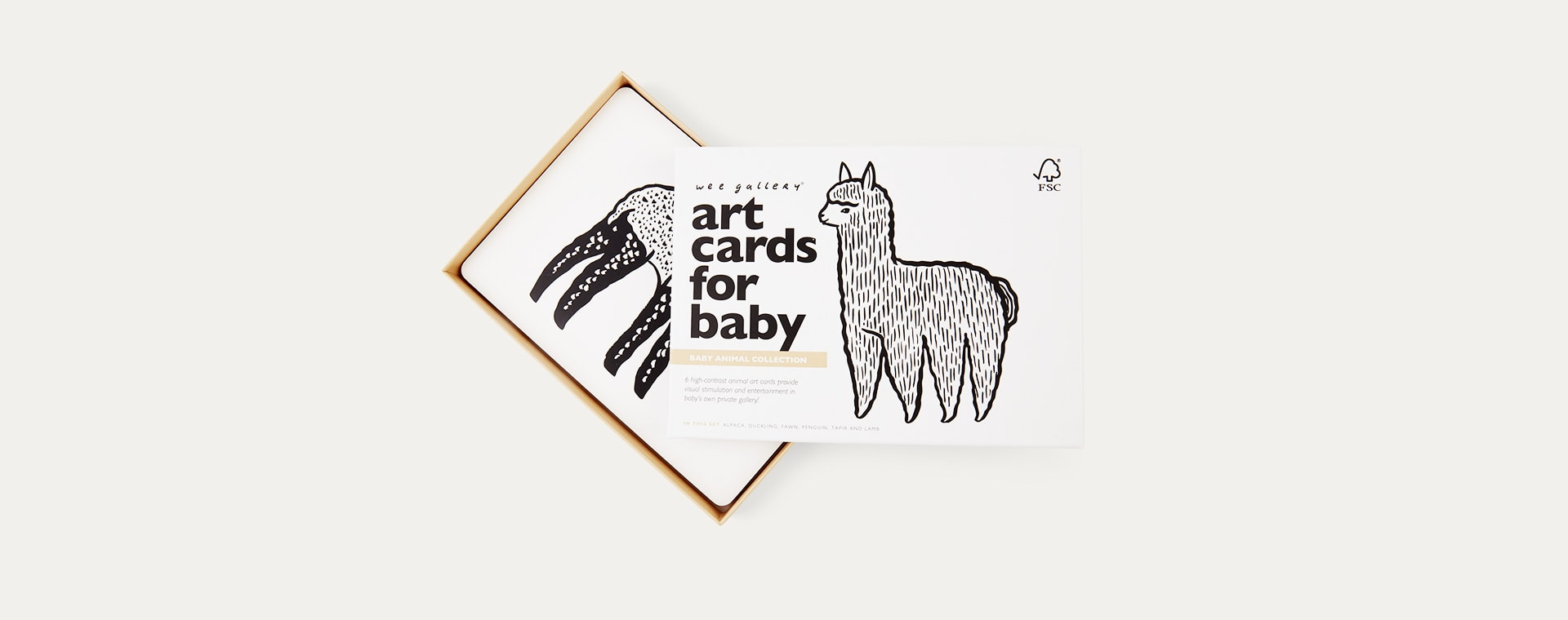 Baby Animals Wee Gallery Art Cards for Baby