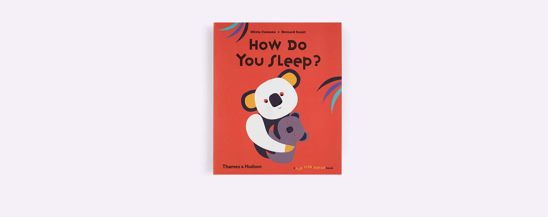 Multi Thames and Hudson How Do You Sleep?