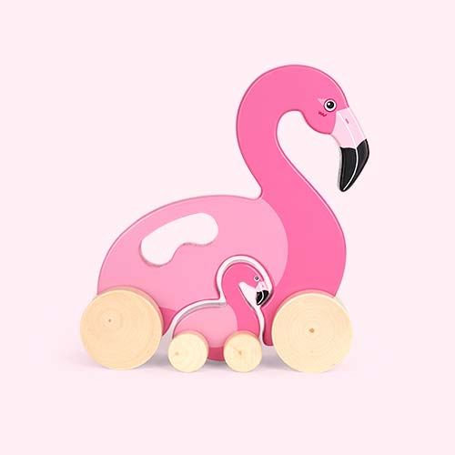 Pink Sunnylife Push And Pull Along Flamingo Toy