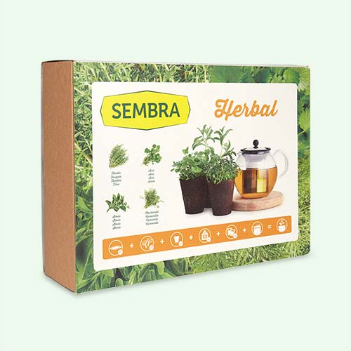 Herbs Sembra Kids Big Kit