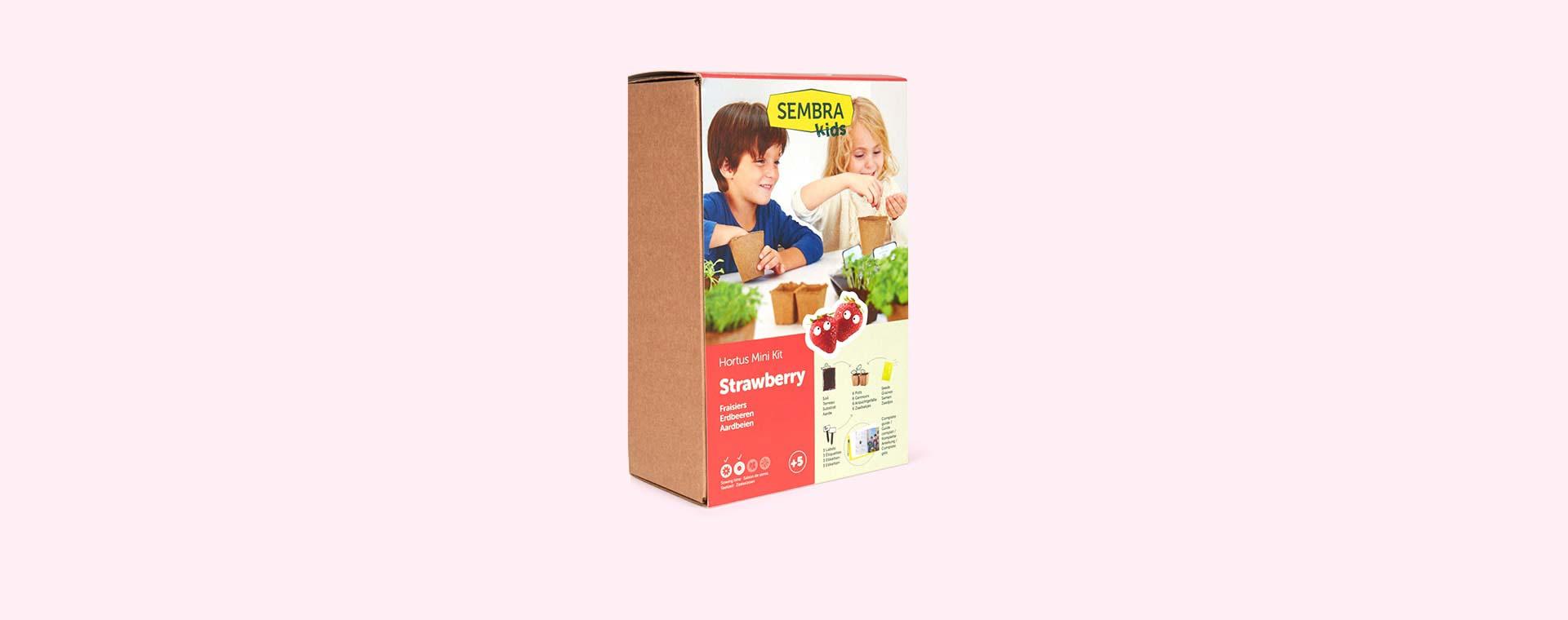 Strawberry Sembra Kids Standard Kit
