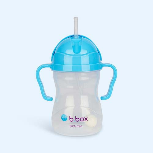 Blueberry b.box Sippy Cup