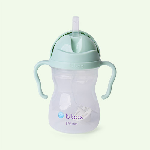 Pistachio b.box Sippy Cup