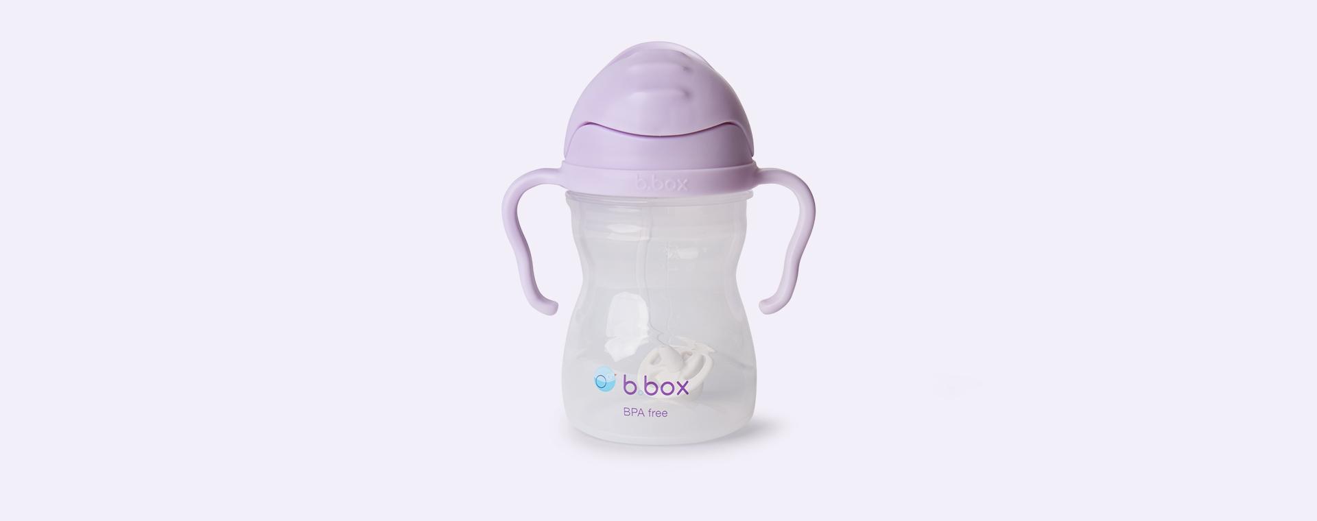 Boysenberry b.box Sippy Cup