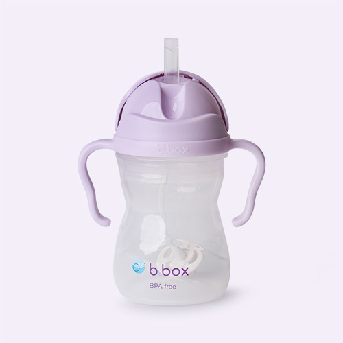 Boysenberry b.box Sippy Cup