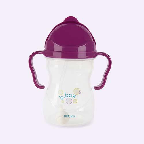 Grape b.box Sippy Cup