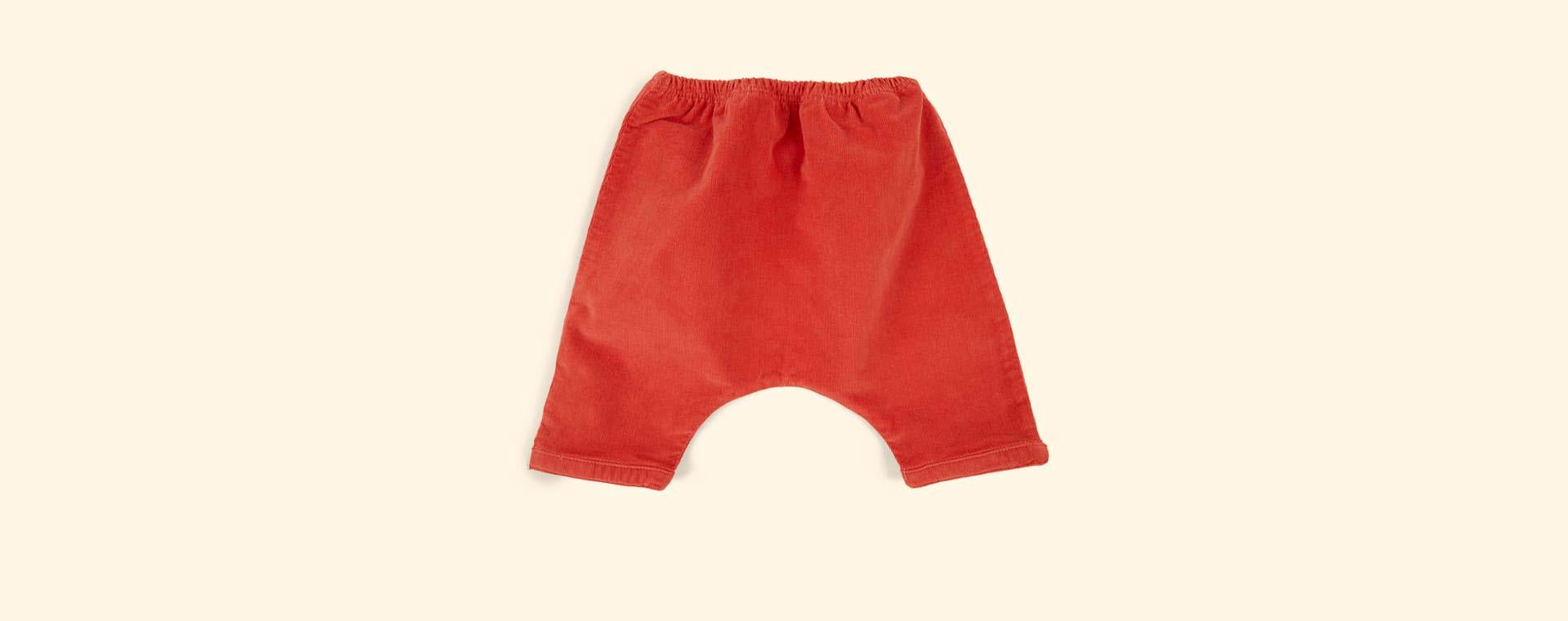 Pumpkin Arsene Et Les Pipelettes Harem Baby Trouser