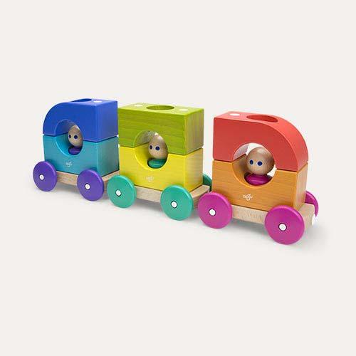 Rainbow tegu Magnetic Tegu Tram