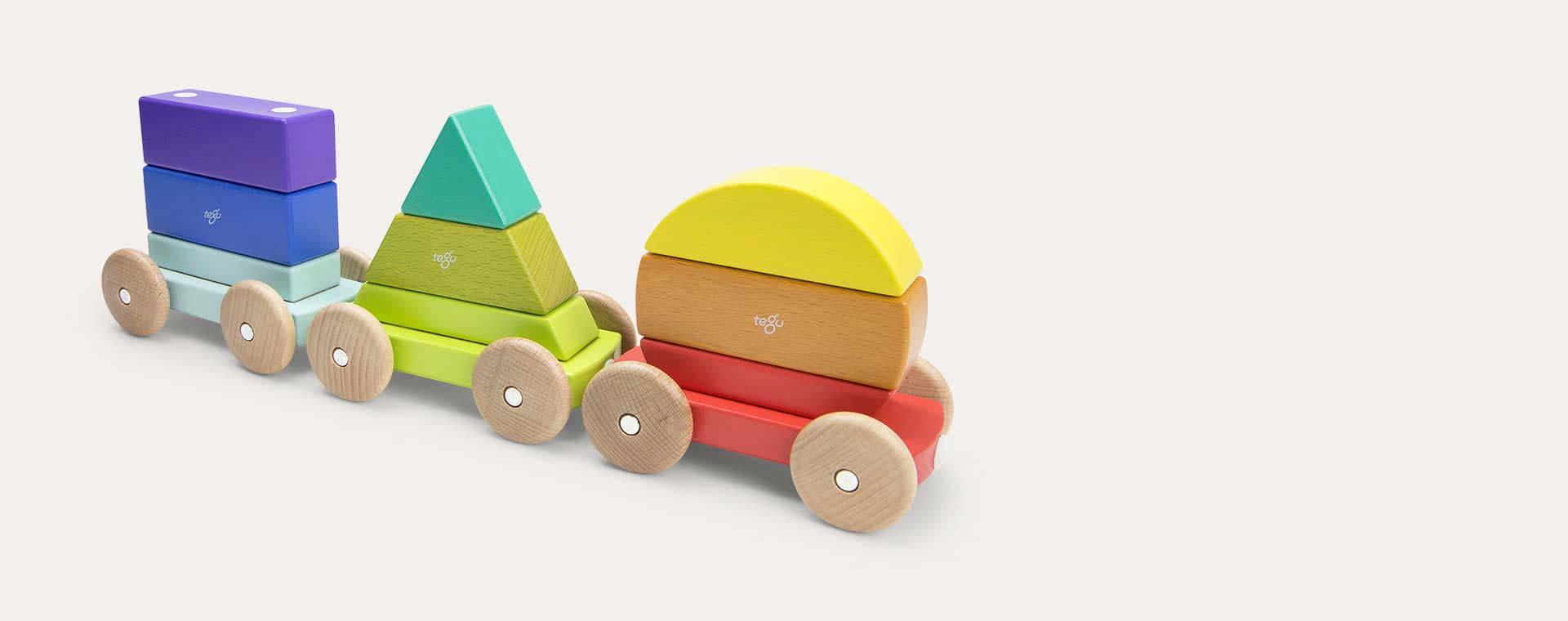 Raibow tegu Magnetic Shape Train
