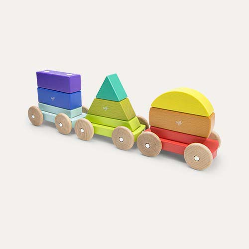 Raibow tegu Magnetic Shape Train
