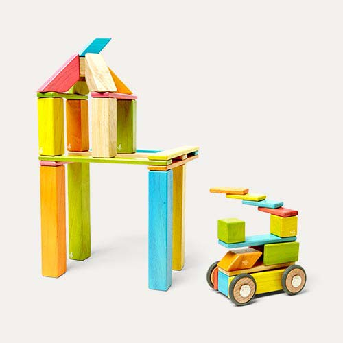 Tints tegu 42 Piece Set