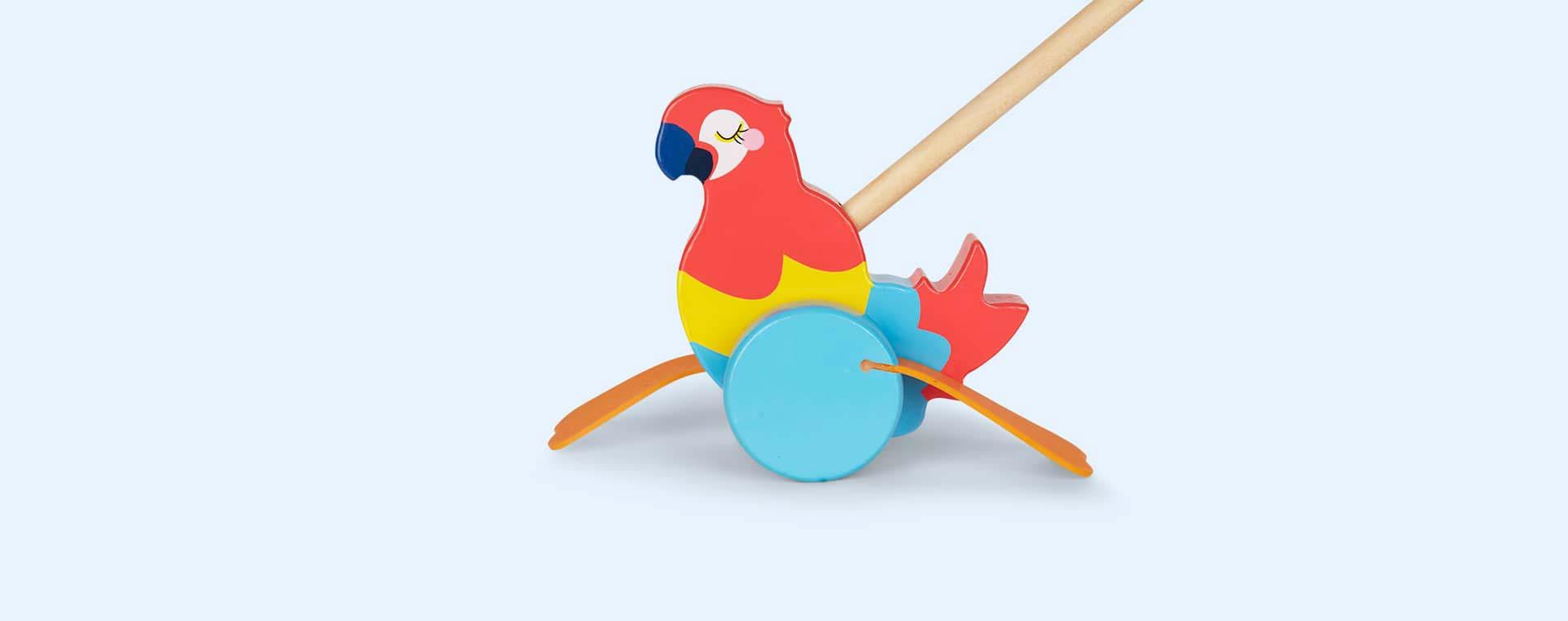 Multi Sunnylife Macaw Push Along Toy