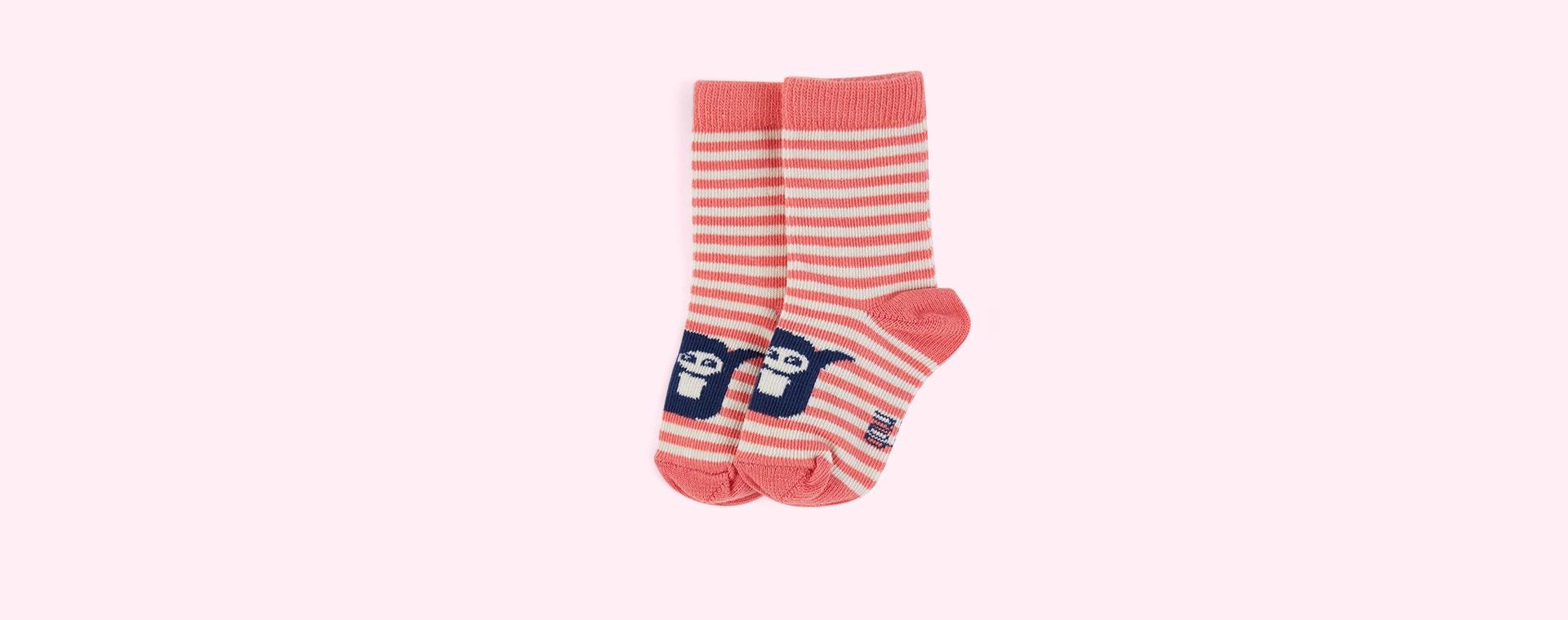 Sorbet The Bonnie Mob Stripe Short Socks