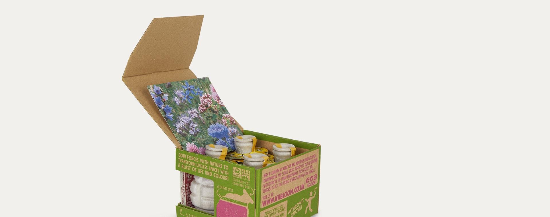 Pollinator Power Seedbom Seedbom Gift Box