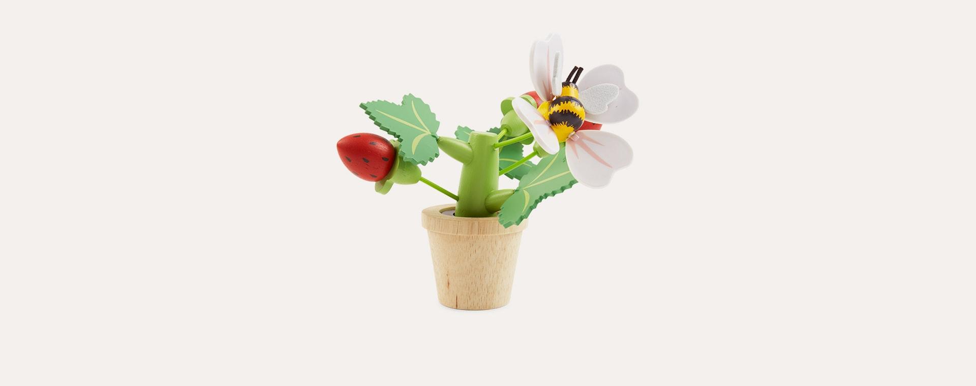 Multi Tender Leaf Toys Strawberry Flower Pot