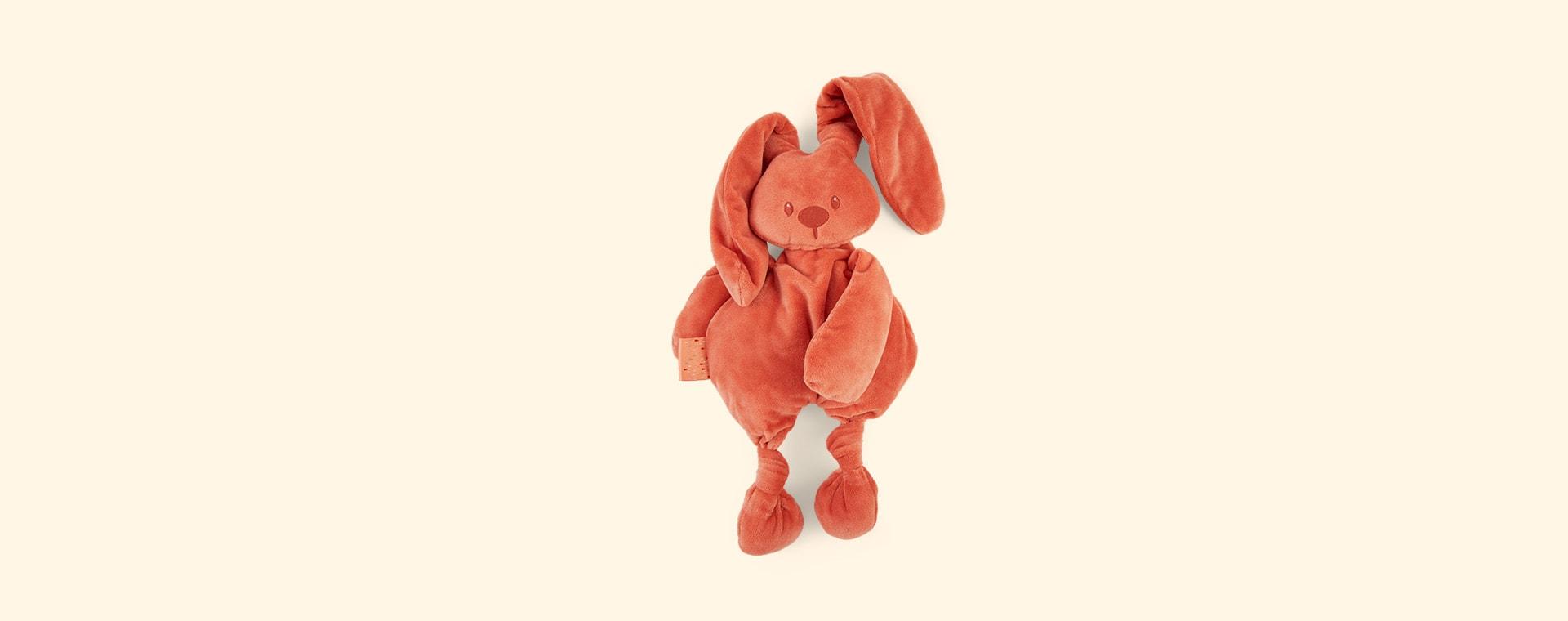Terracotta Nattou Lapidou Cuddle Teddy
