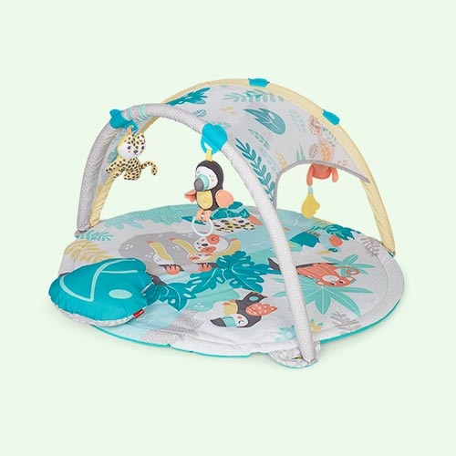 Multi Skip Hop Tropical Paradise Activity Gym & Soother