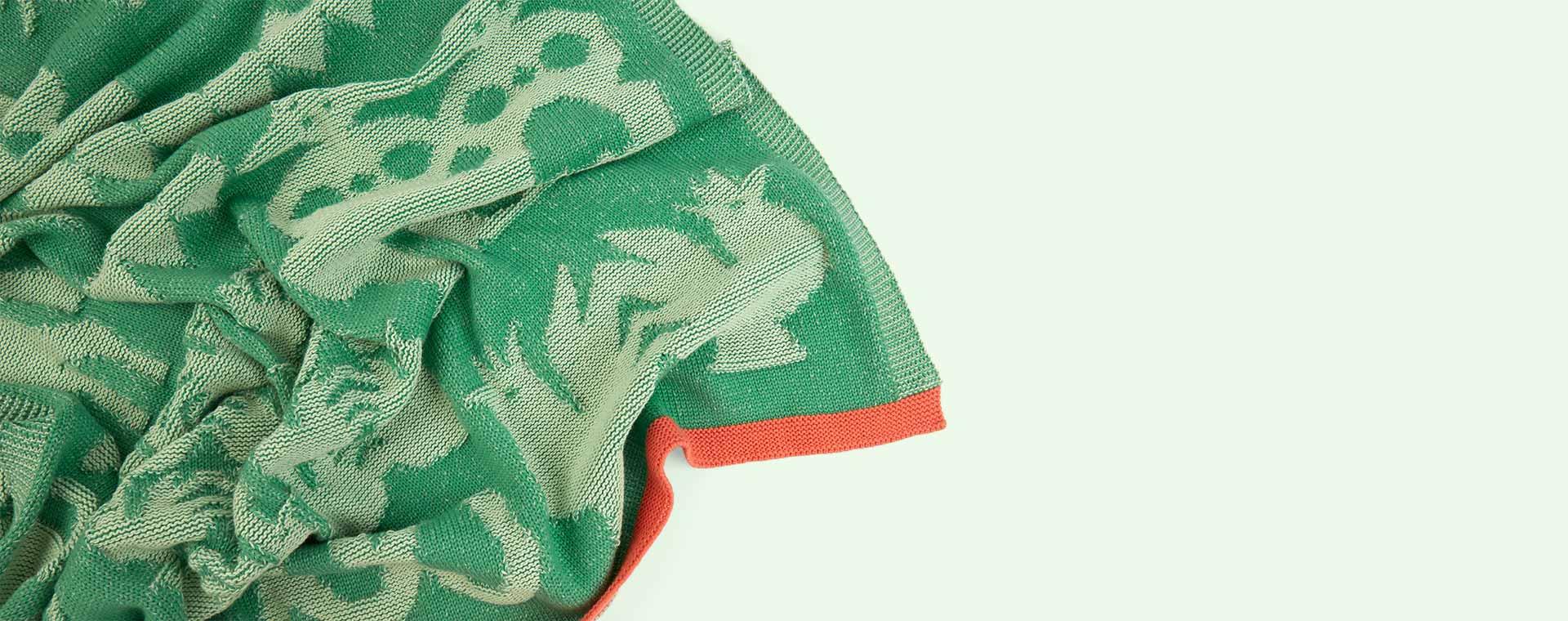 Apple Green Playroom Interiors Blanket