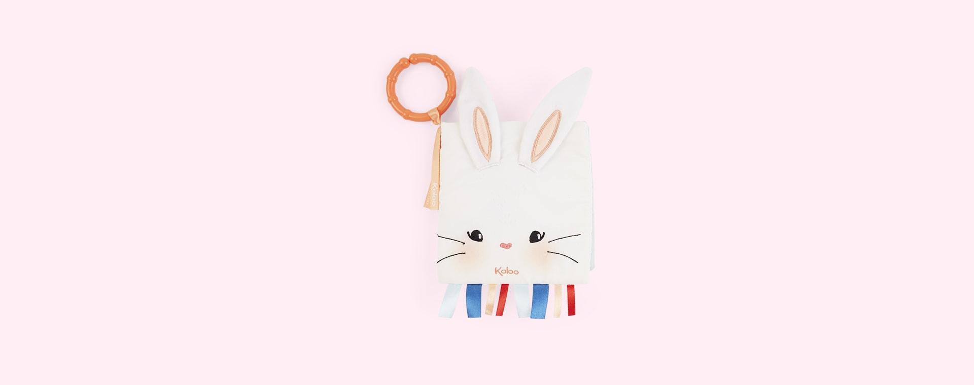 Rabbit Kaloo My Activity Book