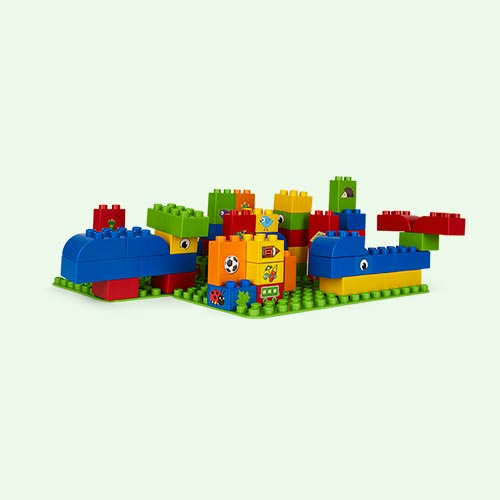 Multi BiOBUDDi Educational Blocks