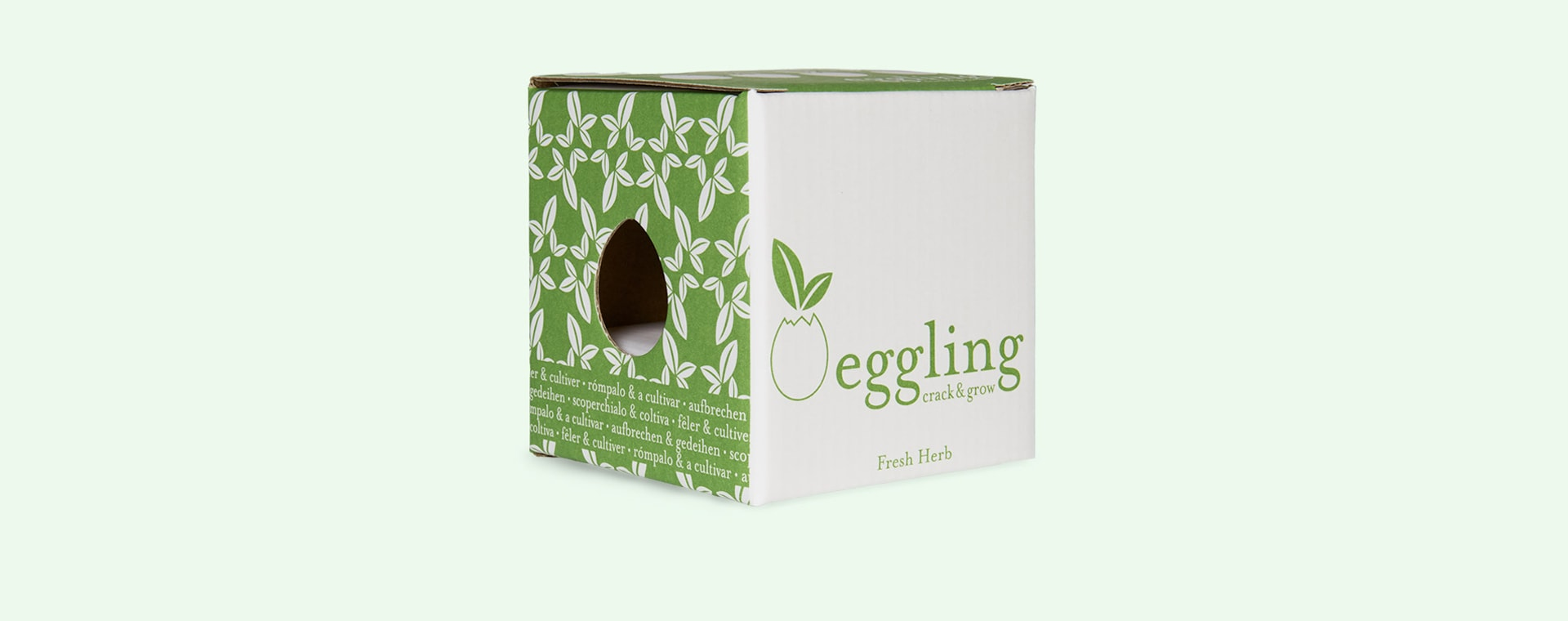 Basil Noted Eggling Crack & Grow
