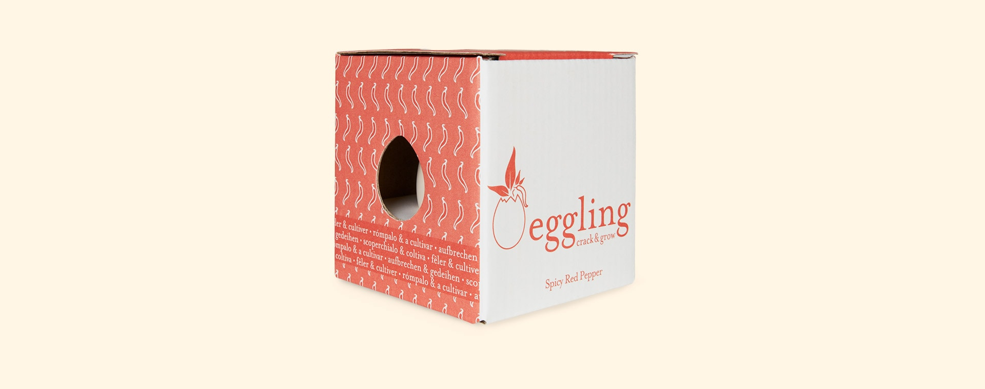 Chilli Pepper Noted Eggling Crack & Grow