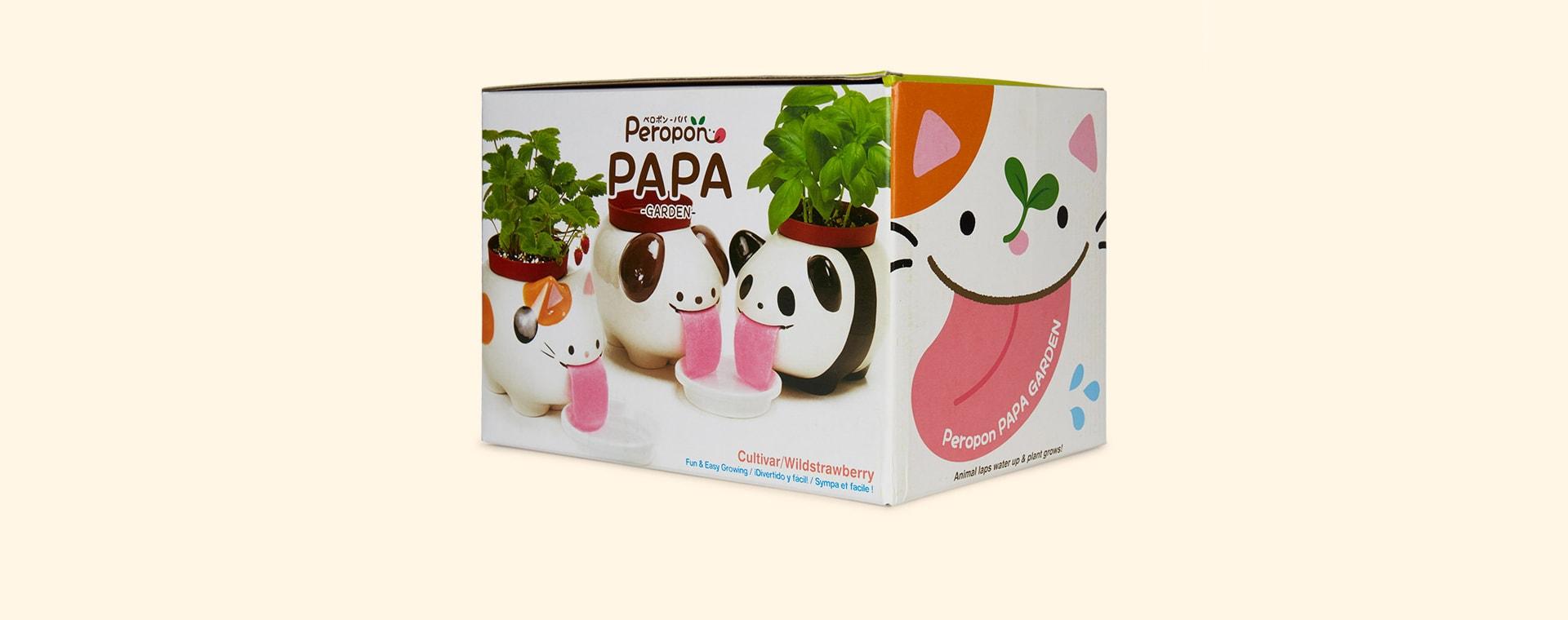 Cat Noted Papa Peropon Drinking Animal Planter