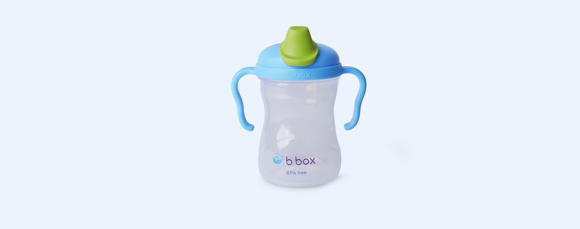 Blueberry b.box Spout Cup