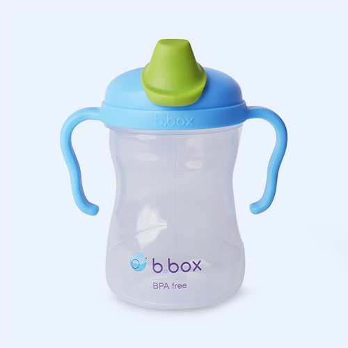 Blueberry b.box Spout Cup