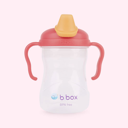 Raspberry b.box Spout Cup
