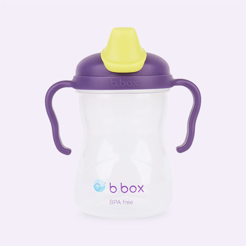 Grape b.box Spout Cup