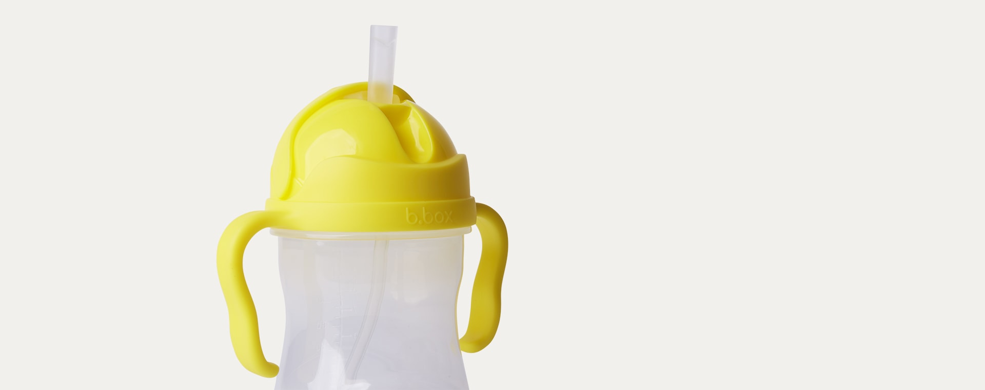 Clear b.box Sippy Cup Replacement Straws & Cleaner