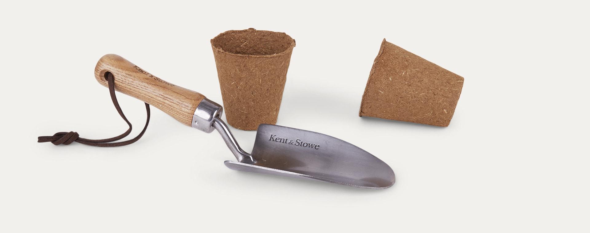 Multi The Den Kit Plant A Tree Kit
