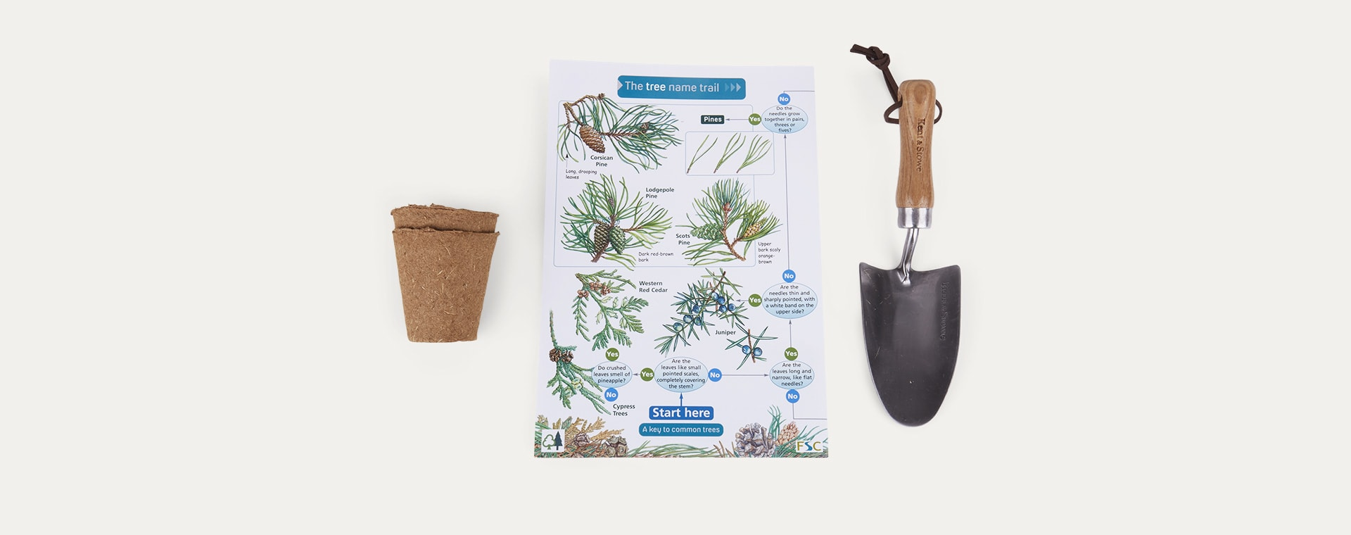 Multi The Den Kit Plant A Tree Kit