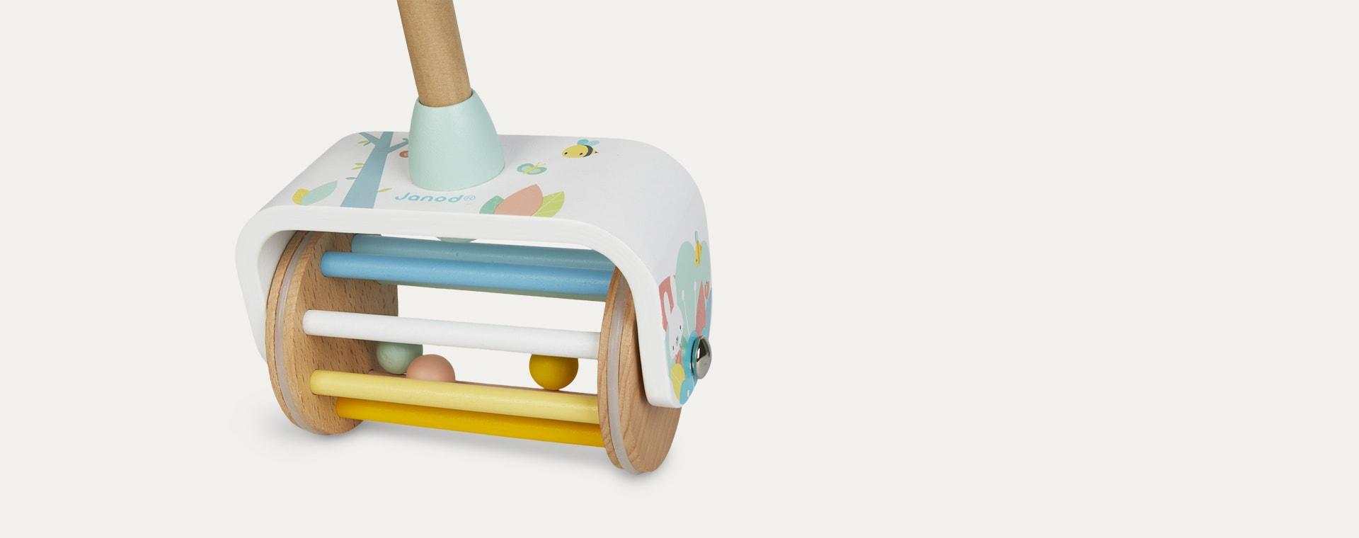 Multi Janod Pure Push Along Toy